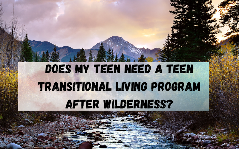 Does My Teen Need a Teen Transitional Living Program After Wilderness?